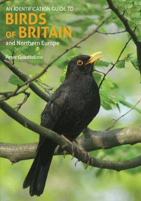 An Identification Guide to Birds of Britain and Northern Europe (2nd edition)