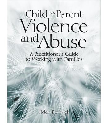The Practitioners Guide to Working with Families