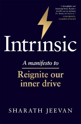 Intrinsic: How we can re-ignite our inner drive in a rewards-based world