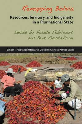 Remapping Bolivia: Resources, Territory and Indigeneity in a Plurinational State