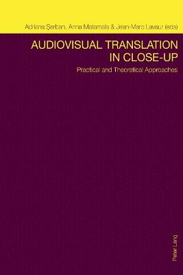 Audiovisual Translation in Close-Up: Practical and Theoretical Approaches
