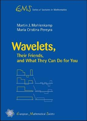 Wavelets, Their Friends, and What They Can Do for You