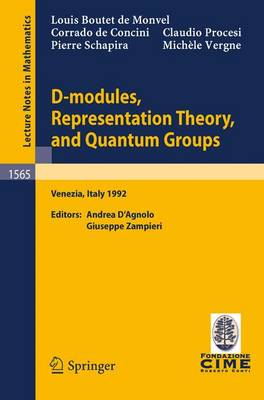 D-modules, Representation Theory and Quantum Groups: Lectures Given at the 2nd Session of the Centro Internazionale Matematico Estivo (C.I.M.E.) Held in Venezia, Italy, June 12-20, 1992: Volume 1565