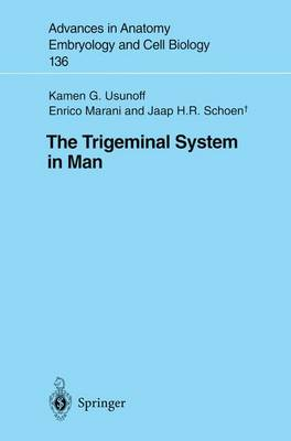 The Trigeminal System in Man