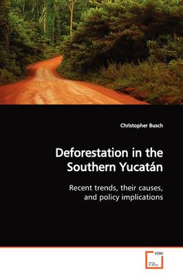 Deforestation in the Southern Yucatan