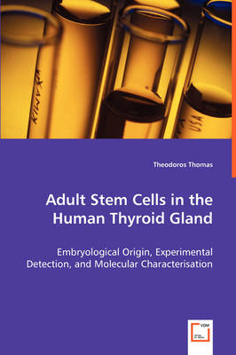Adult Stem Cells in the Human Thyroid Gland - Embryological Origin, Experimental Detection, and Molecular Characterisation