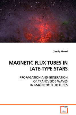 Magnetic Flux Tubes in Late-Type Stars Propagation and Generation of Transverse Waves in Magnetic Flux Tubes