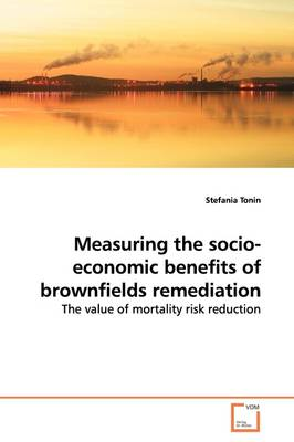 Measuring the Socio-Economic Benefits of Brownfields Remediation