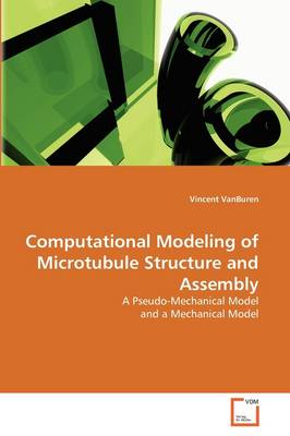 Computational Modeling of Microtubule Structure and Assembly