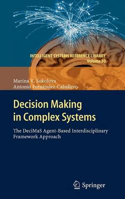 Decision Making in Complex Systems: The DeciMaS Agent-based Interdisciplinary Framework Approach