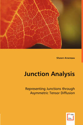 Junction Analysis