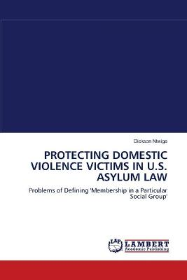 Protecting Domestic Violence Victims in U.S. Asylum Law