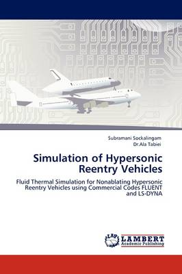 Simulation of Hypersonic Reentry Vehicles