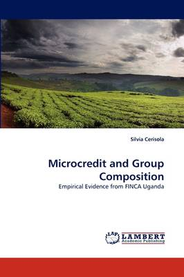 Microcredit and Group Composition
