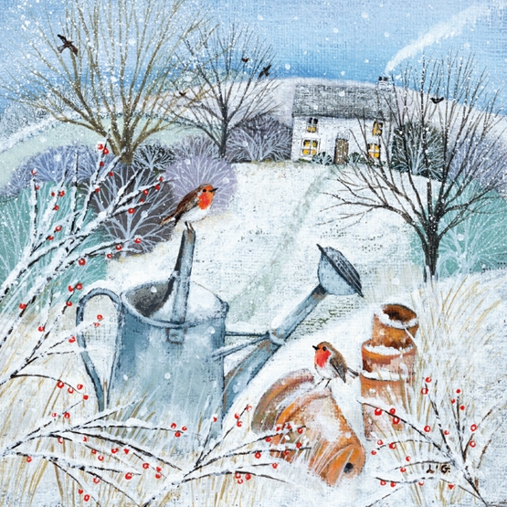 Xmas Charity Cottage in the Snow Robins Large Sqr Pack of 5 Macmillan Cards