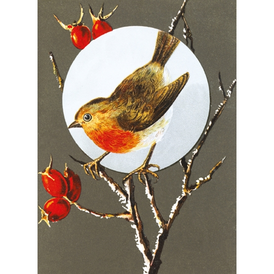 Xmas Charity V&A Robin on Branch Rectangle Pack of 8 cards