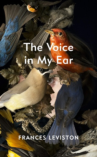 Signed First Edition - The Voice in My Ear