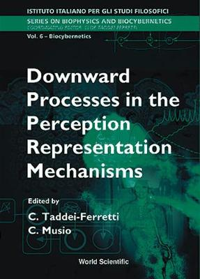 Downward Processes in the Perception Representation Mechanisms