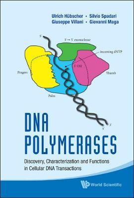 Dna Polymerases: Discovery, Characterization And Functions In Cellular Dna Transactions